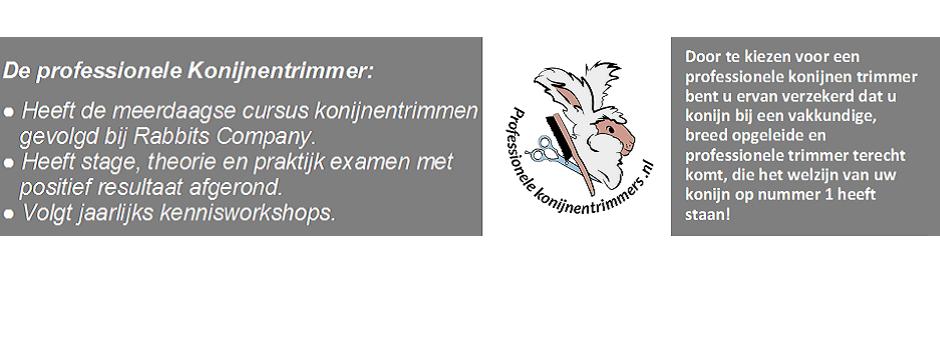 Op zoek naar een professionele Konijnentrimmer in Nederland of België?